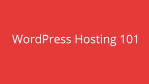 WordPress Hosting 101