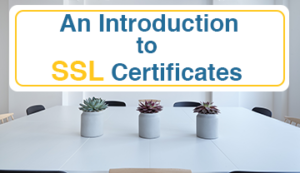 An Introduction to SSL Certificates featured image