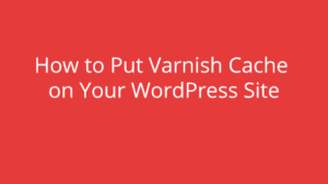How to Put Varnish Cache on Your WordPress Site