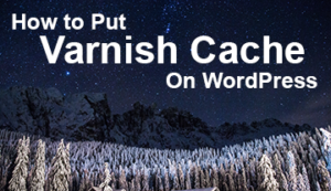 How to Put Varnish Cache on WordPress featured image