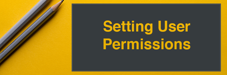 Setting User Permissions section header