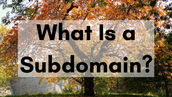 What is a subdomain blog.pair.com header