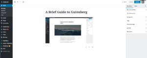 add an image to gutenberg editor in wp