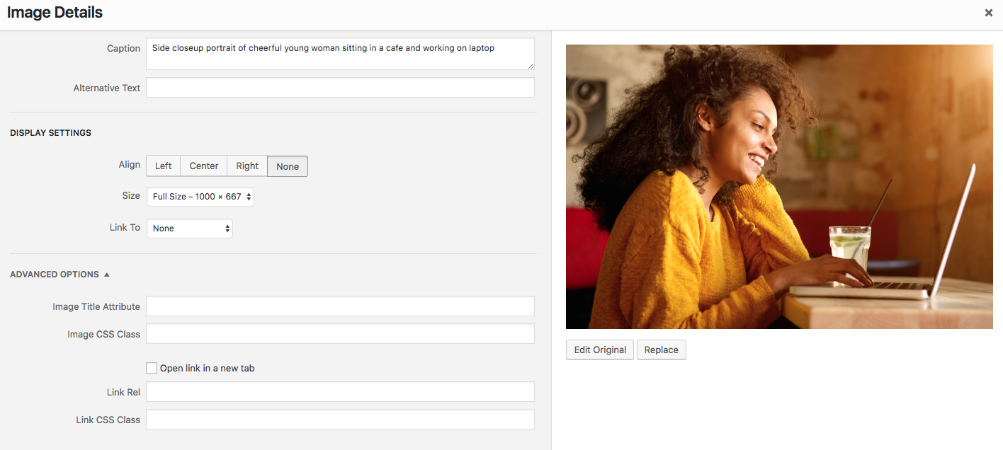 WordPress visual editor dashboard screenshot of how to upload an image and add alt text